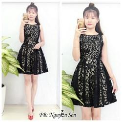 Đầm xòe phối ren thêu giống Trang Bum VD553 - V160