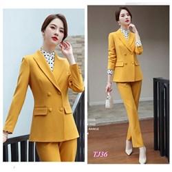 Set nguyên bộ áo Vest quần dài TJ36 - V375