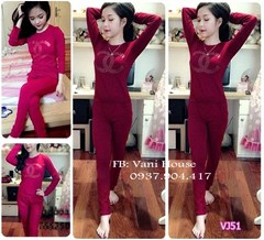 Set nguyên bộ quần áo chener VJ51 - V155